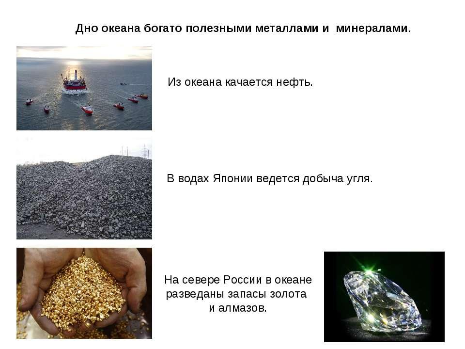 Дно океана богато полезными металлами и минералами. Из океана качается нефть....