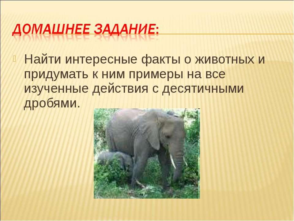 Найти интересные факты о животных и придумать к ним примеры на все изученные ...