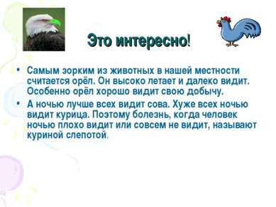 Это интересно! Самым зорким из животных в нашей местности считается орёл. Он ...