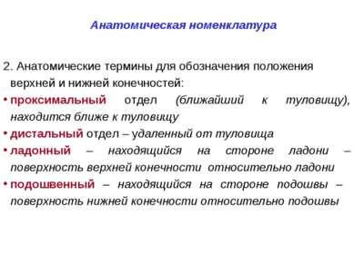 Анатомическая номенклатура 2. Анатомические термины для обозначения положения...