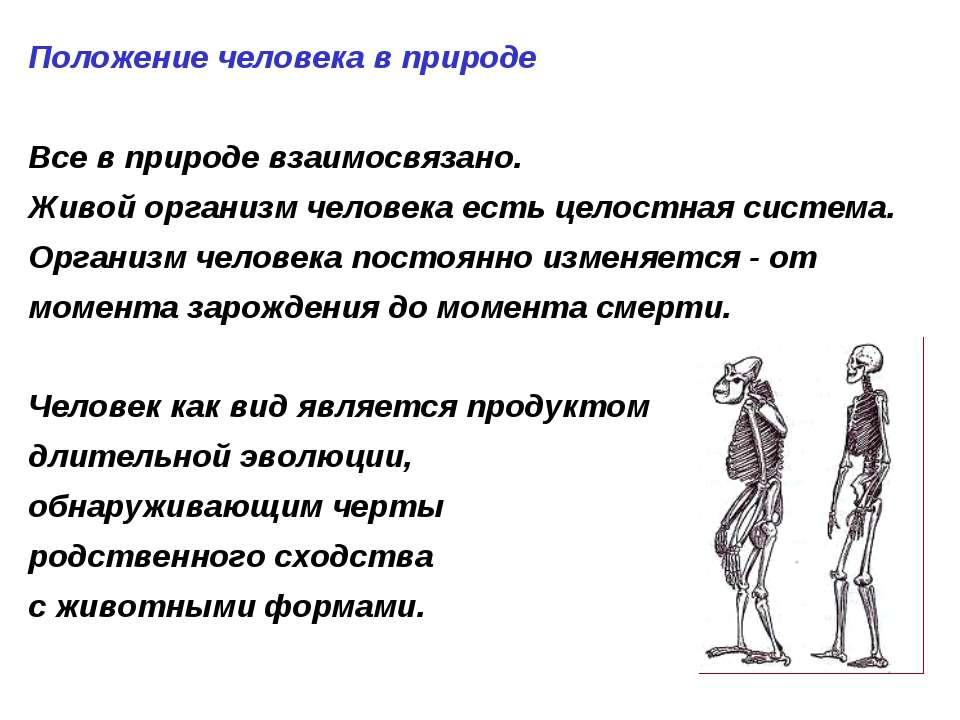Положение человека в природе Все в природе взаимосвязано. Живой организм чело...
