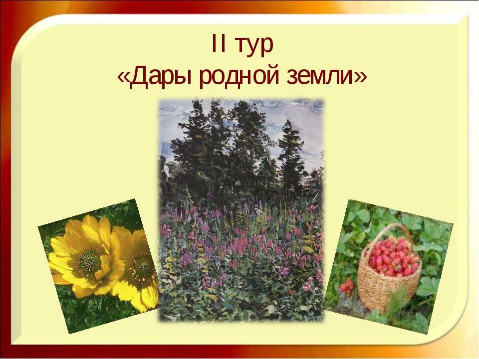II тур «Дары родной земли»