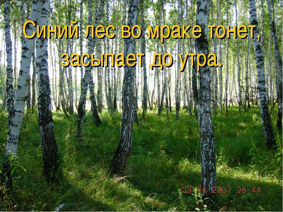 Синтаксический разбор Синий лес во мраке тонет, засыпает до утра.