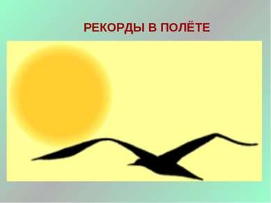 РЕКОРДЫ В ПОЛЁТЕ