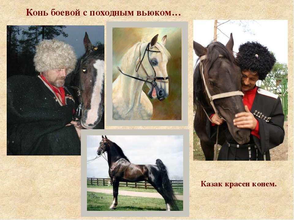 Конь боевой с походным вьюком… Казак красен конем.