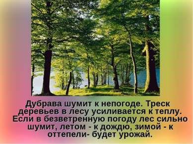 Дубрава шумит к непогоде. Треск деревьев в лесу усиливается к теплу. Если в б...