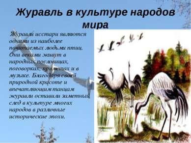 Журавль в культуре народов мира Журавли исстари являются одними из наиболее п...