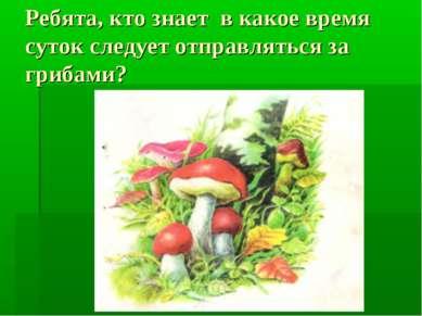 Ребята, кто знает в какое время суток следует отправляться за грибами?