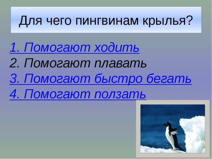 При подготовке викторины использованы следующие ресурсы: Перекатьева О. В., П...