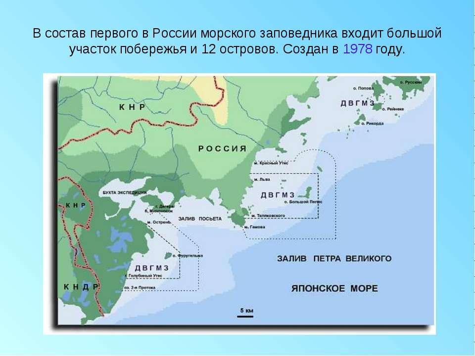 В состав первого в России морского заповедника входит большой участок побереж...
