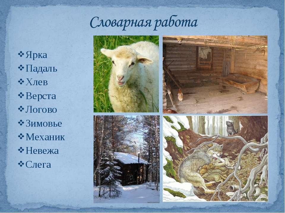 Ярка Падаль Хлев Верста Логово Зимовье Механик Невежа Слега
