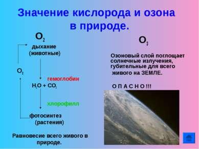 Значение кислорода и озона в природе. О2 дыхание (животные) О2 гемоглобин Н2О...