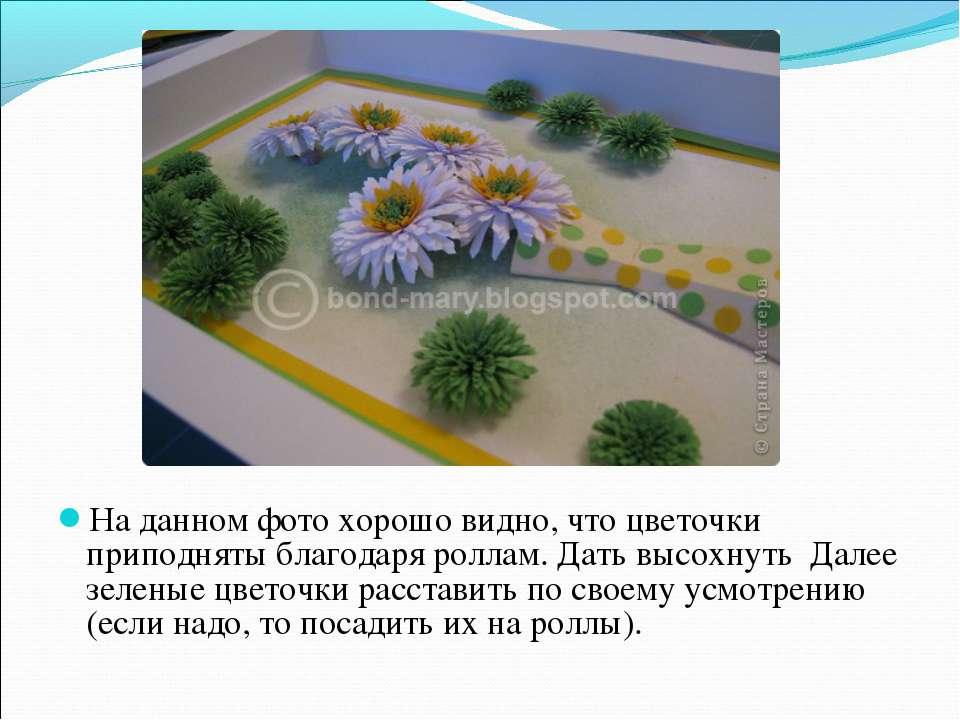 На данном фото хорошо видно, что цветочки приподняты благодаря роллам. Дать в...