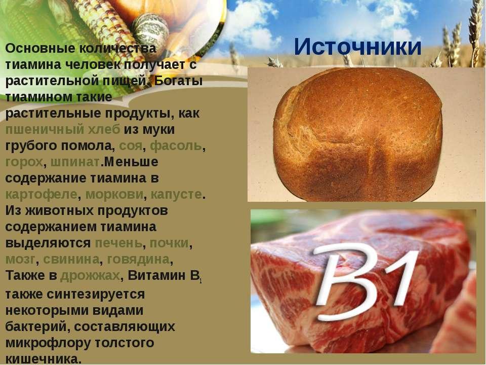 Источники Основные количества тиамина человек получает с растительной пищей. ...