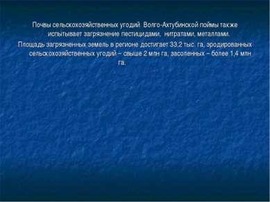Почвы сельскохозяйственных угодий Волго-Ахтубинской поймы также испытывает за...