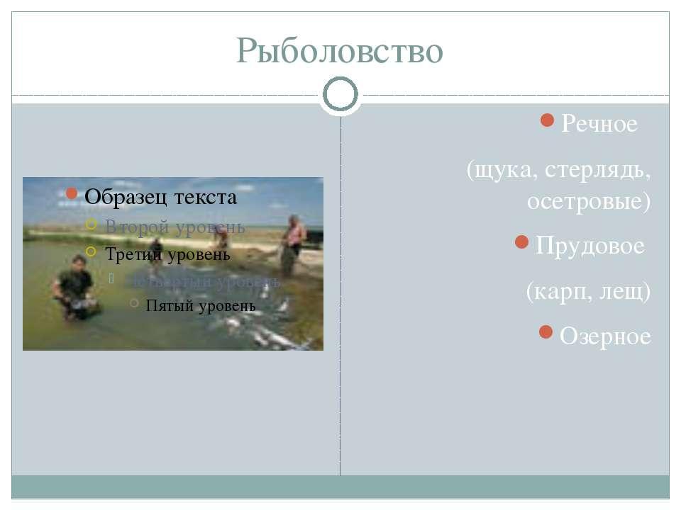 Рыболовство Речное (щука, стерлядь, осетровые) Прудовое (карп, лещ) Озерное