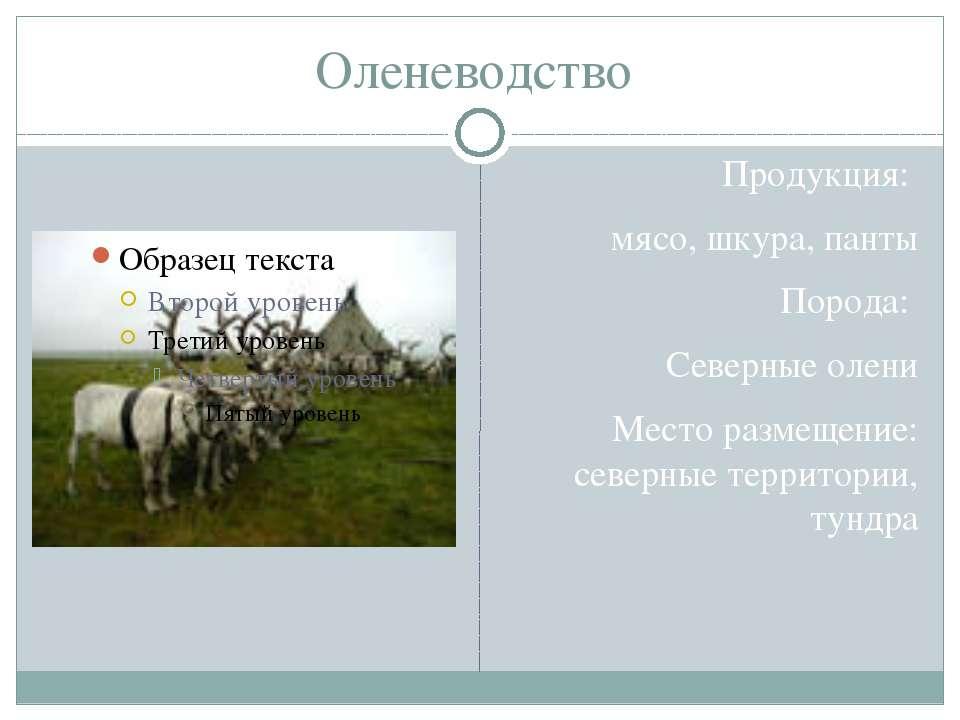 Оленеводство Продукция: мясо, шкура, панты Порода: Северные олени Место разме...