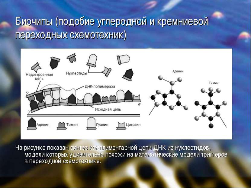Биочипы (подобие углеродной и кремниевой переходных схемотехник) На рисунке п...