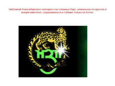Эмблемой Новосибирского зоопарка стал снежные барс, уникальное по красоте и г...