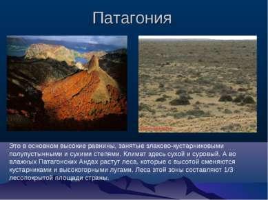 Патагония Это в основном высокие равнины, занятые злаково-кустарниковыми полу...
