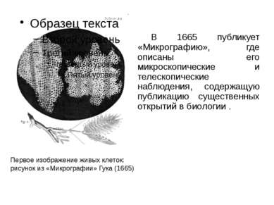 В 1665 публикует «Микрографию», где описаны его микроскопические и телескопич...