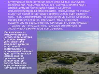 Отступившее море оставило после себя 54 тыс. км2 сухого морского дна, покрыто...