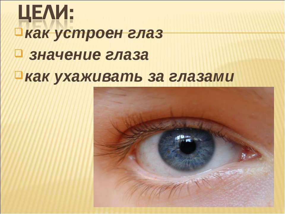 как устроен глаз значение глаза как ухаживать за глазами
