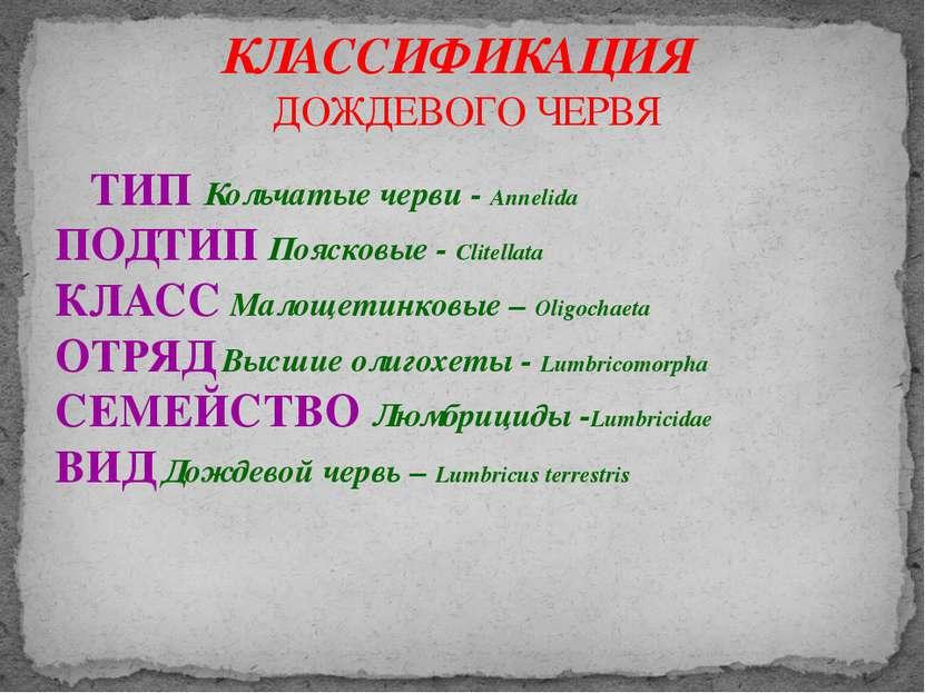 ТИП Кольчатые черви - Annelida ПОДТИП Поясковые - Clitellata КЛАСС Малощетинк...