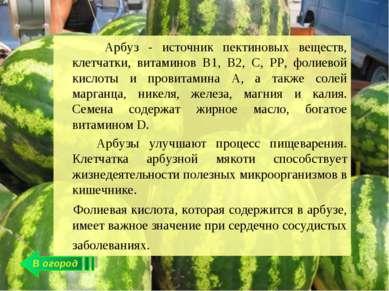 В огород Арбуз - источник пектиновых веществ, клетчатки, витаминов В1, В2, С,...