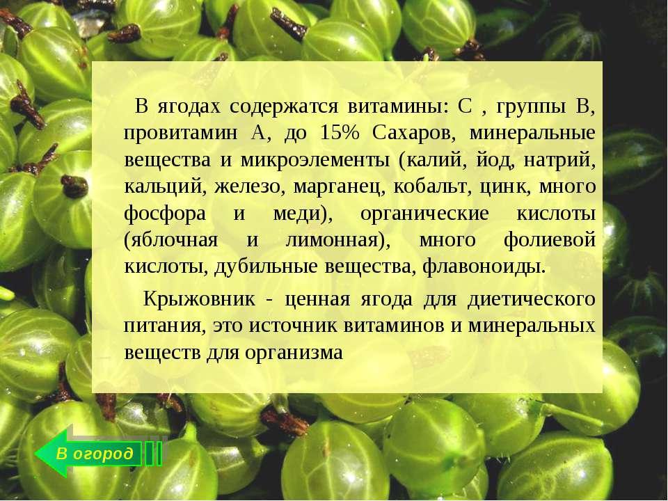 В огород В ягодах содержатся витамины: С , группы В, провитамин А, до 15% Сах...