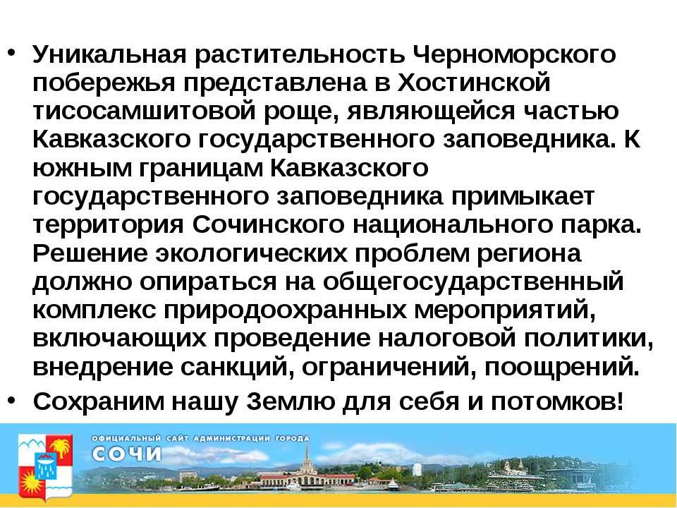 Уникальная растительность Черноморского побережья представлена в Хостинской т...