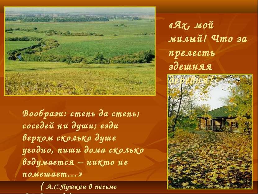 «Ах, мой милый! Что за прелесть здешняя деревня! Вообрази: степь да степь; со...