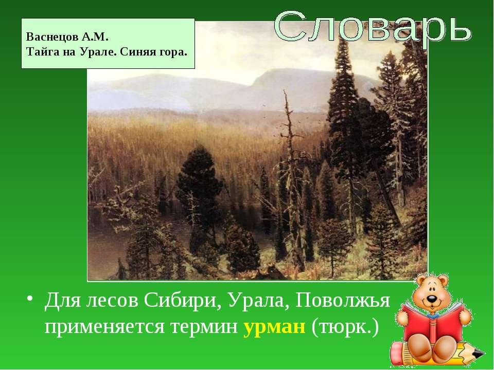 Для лесов Сибири, Урала, Поволжья применяется термин урман (тюрк.) Васнецов А...