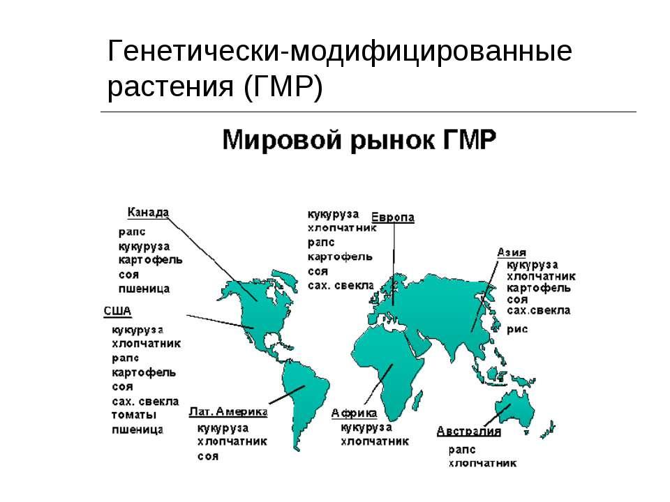 Генетически-модифицированные растения (ГМР)
