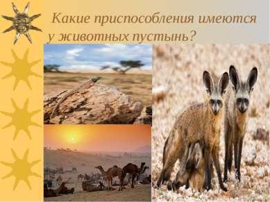 * Какие приспособления имеются у животных пустынь?