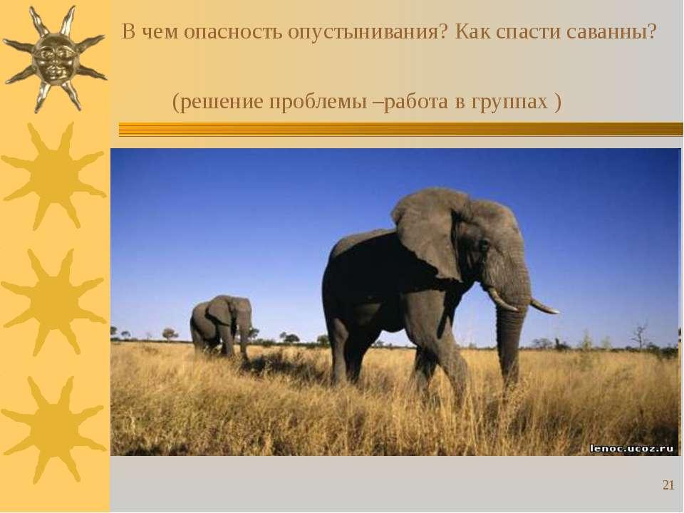 * В чем опасность опустынивания? Как спасти саванны? (решение проблемы –работ...