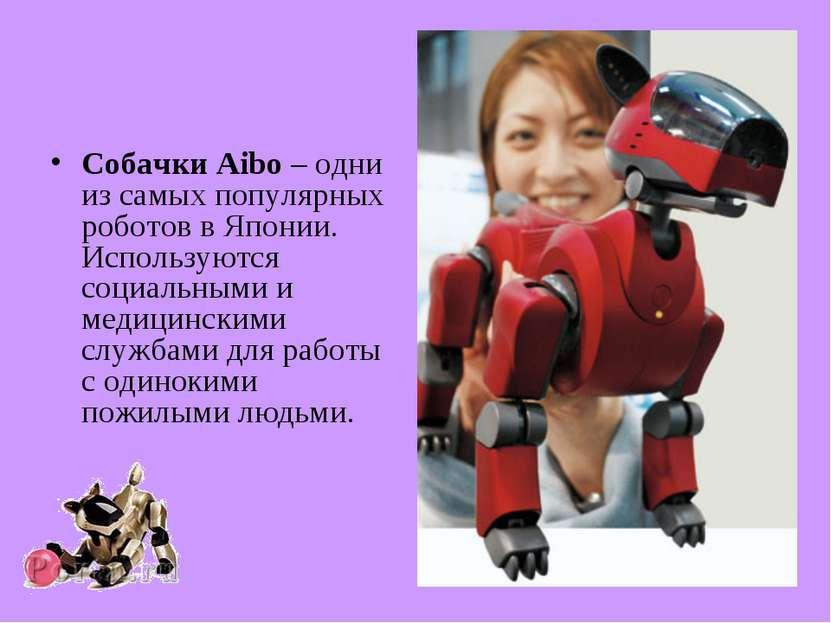 Собачки Aibo – одни из самых популярных роботов в Японии. Используются социал...