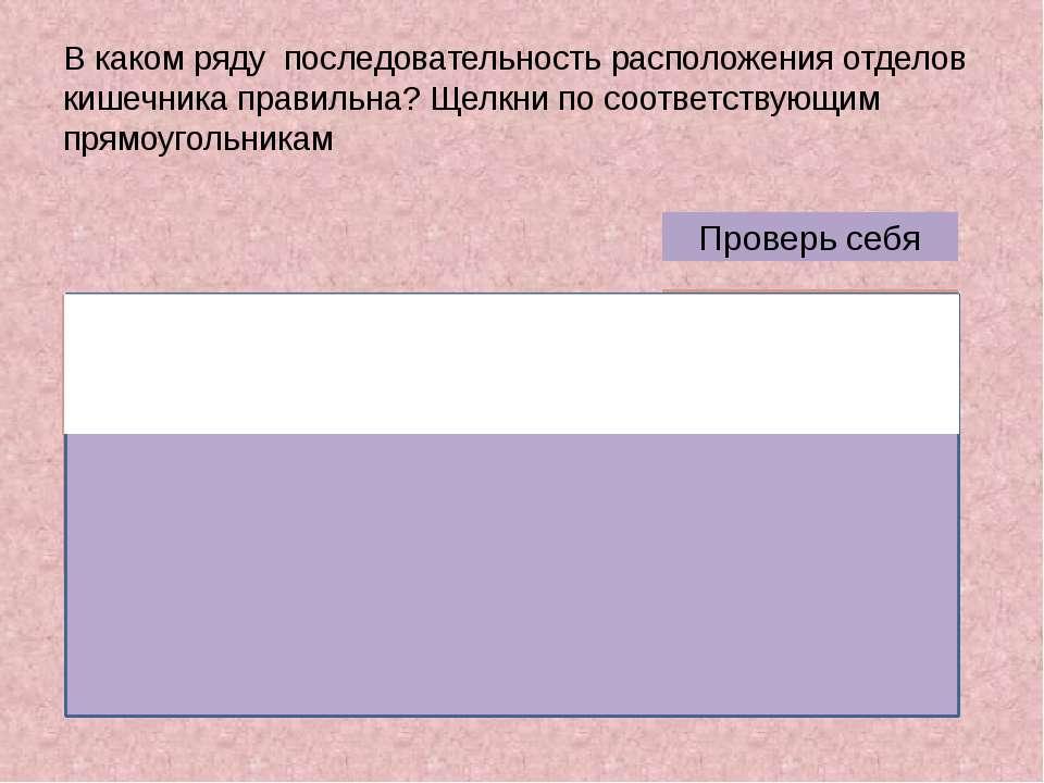 В каком ряду последовательность расположения отделов кишечника правильна? Щел...