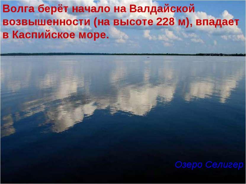 Волга берёт начало на Валдайской возвышенности (на высоте 228 м), впадает в К...