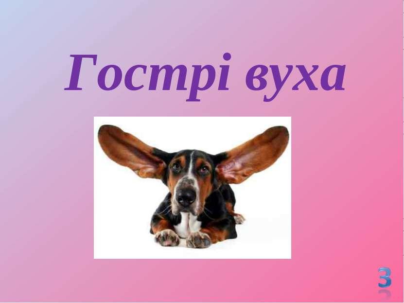 Гострі вуха