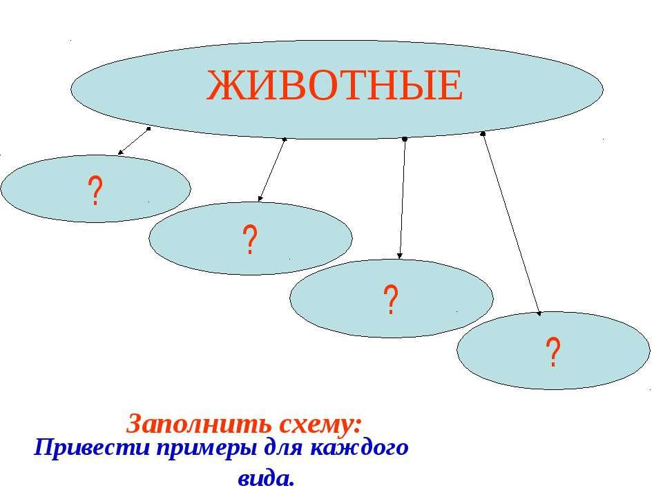 ЖИВОТНЫЕ ? ? ? ? Заполнить схему: Привести примеры для каждого вида.