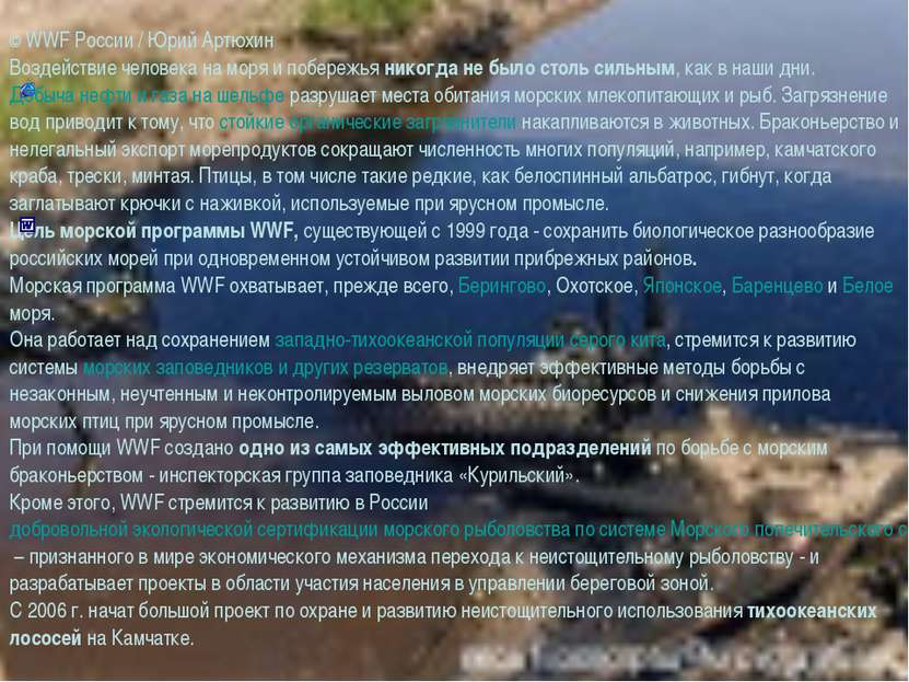 © WWF России / Юрий Артюхин Воздействие человека на моря и побережья никогда ...