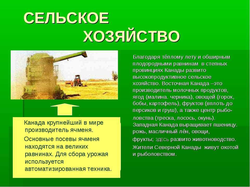 СЕЛЬСКОЕ ХОЗЯЙСТВО Благодаря тёплому лету и обширным плодородными равнинам в ...