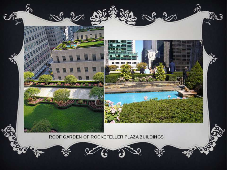 ROOF GARDEN OF ROCKEFELLER PLAZA BUILDINGS