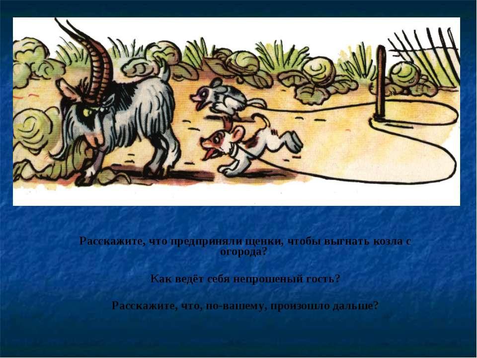 Расскажите, что предприняли щенки, чтобы выгнать козла с огорода? Как ведёт с...