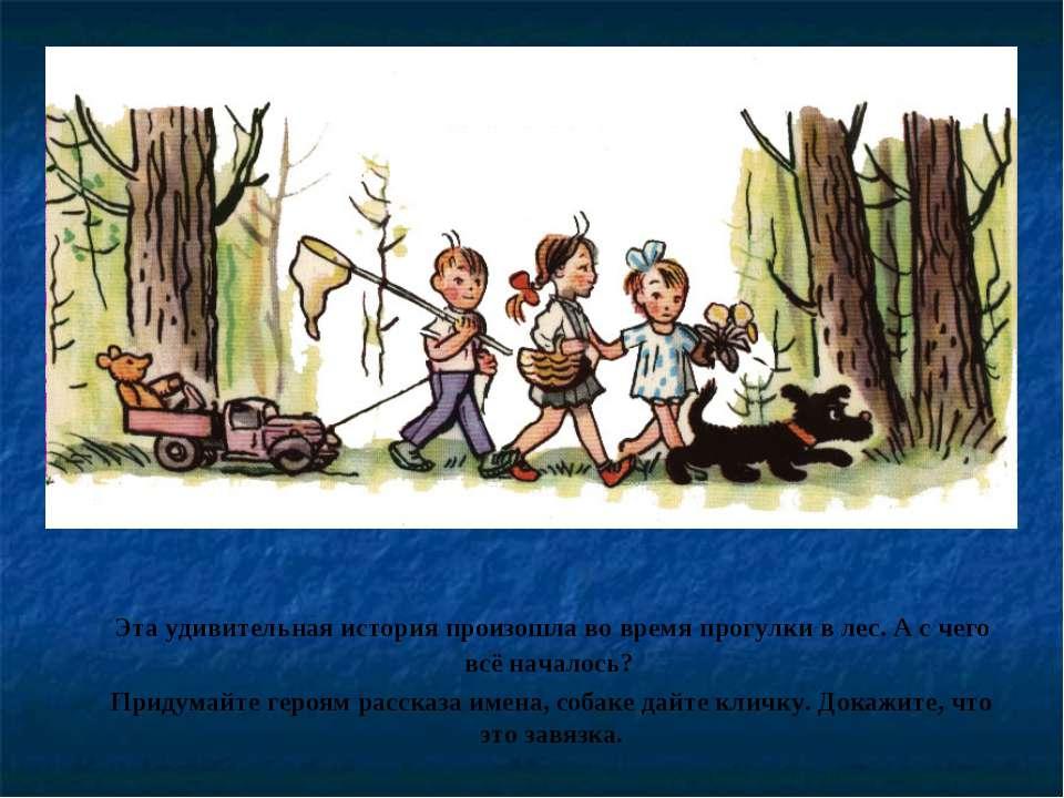 Эта удивительная история произошла во время прогулки в лес. А с чего всё нача...