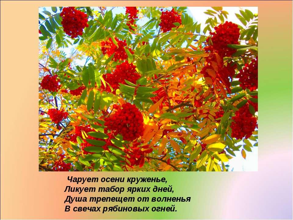 Чарует осени круженье, Ликует табор ярких дней, Душа трепещет от волненья В с...