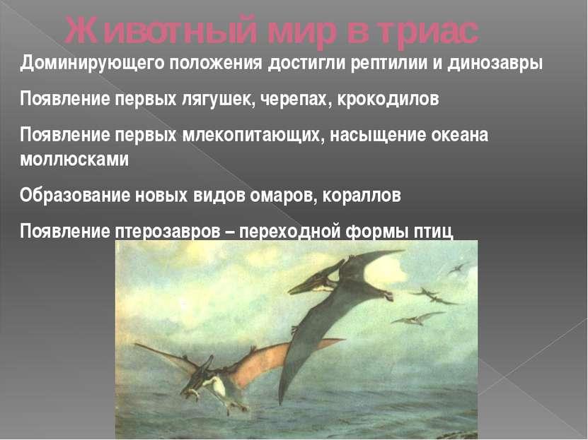 Животный мир в триас Доминирующего положения достигли рептилии и динозавры По...