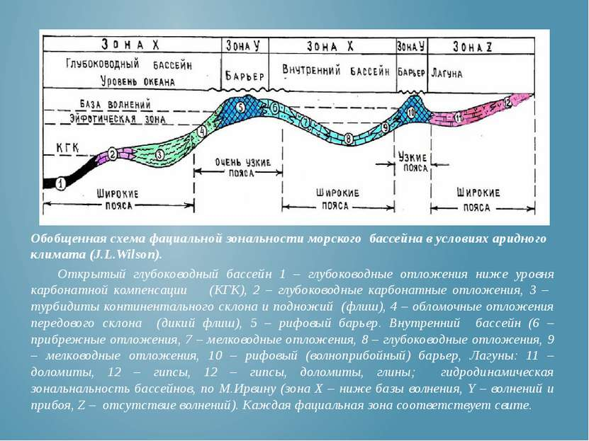 Обобщенная схема фациальной зональности морского бассейна в условиях аридного...