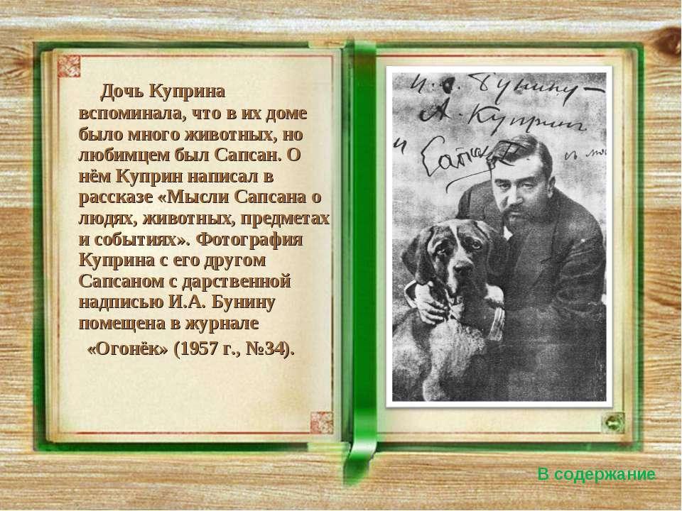 Дочь Куприна вспоминала, что в их доме было много животных, но любимцем был С...